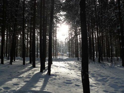 зимний парк1jpg