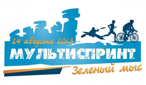 logo_multisprint